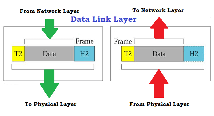 3-Data-Link-Layer-in-OSI-Model.png